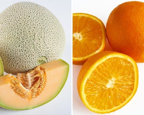 Dehydrated Fruit Options - Cantaloupe, left (High in Vitamin A) and Oranges, right (High in Vitamin C)